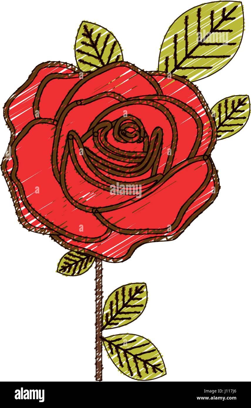 Dessin Au Crayon De Couleur De Fleur Rose Rouge Avec Des Feuilles Et