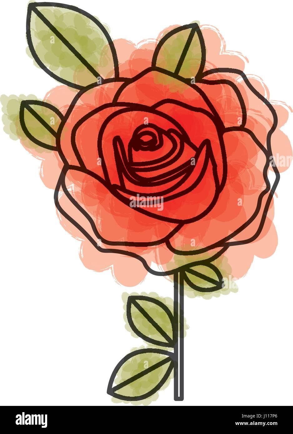 Aquarelle Dessin De Fleur Rose Rouge Avec Des Feuilles Et De La Tige