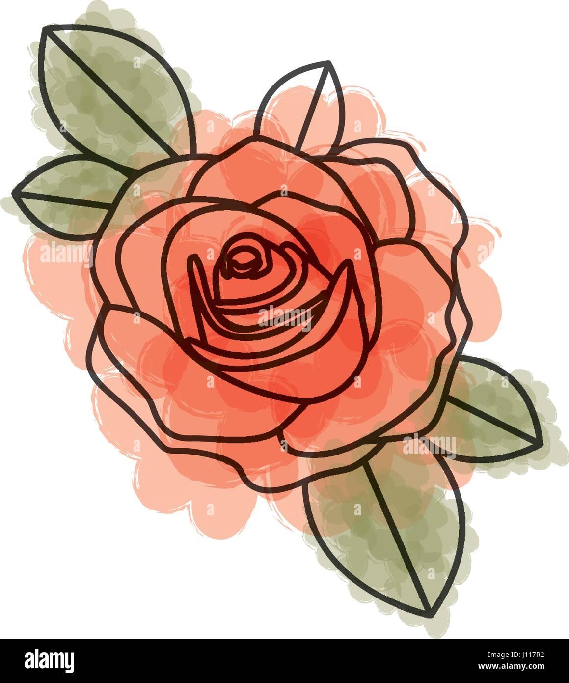 Aquarelle Dessin De Fleur Rose Rouge Avec Des Feuilles