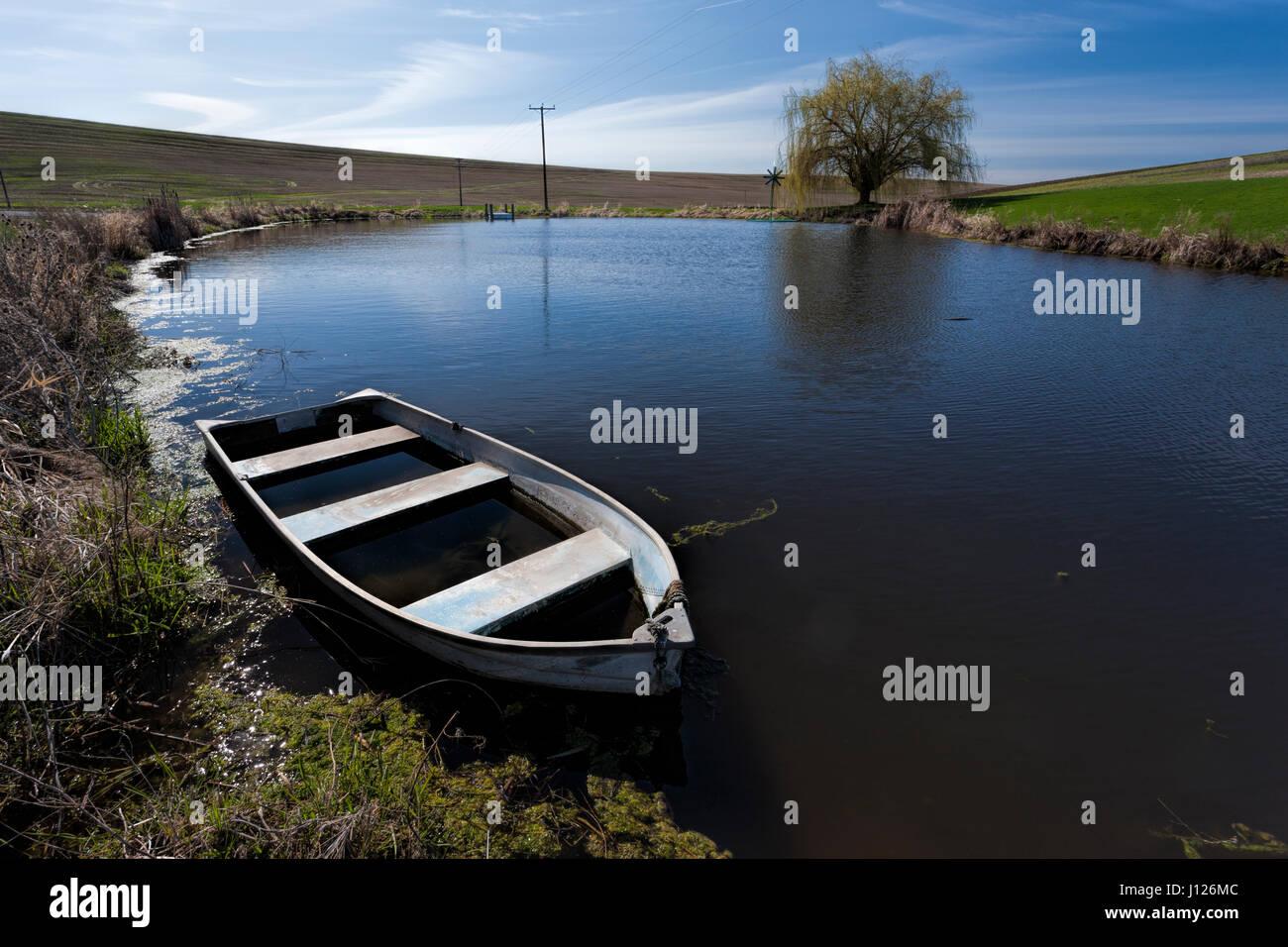 Une vieille barque en partie remplie d'eau dans un étang à l'Est de Washington. Banque D'Images
