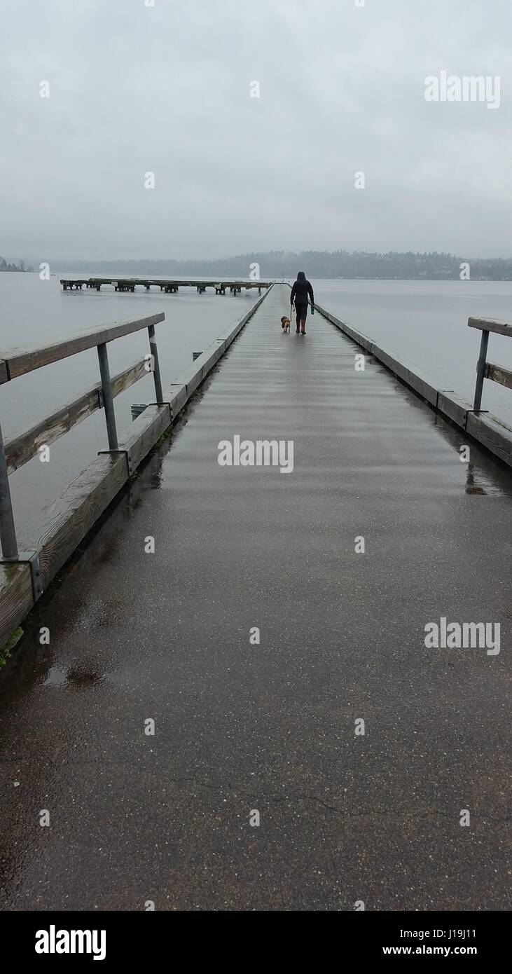 Journée morne sur le Dock. Journée humide au moment de la connexion du parc de flèche à Kenmore, Photo Stock