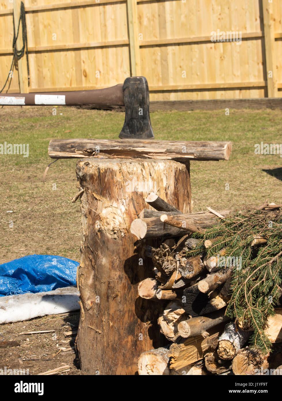 Fractionnement du ax feu de camp sur une souche de bois. Photo Stock