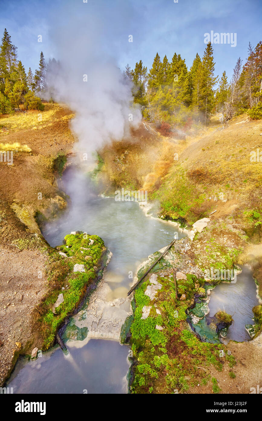 Hot Spring dans le Parc National de Yellowstone, Wyoming, USA. Photo Stock