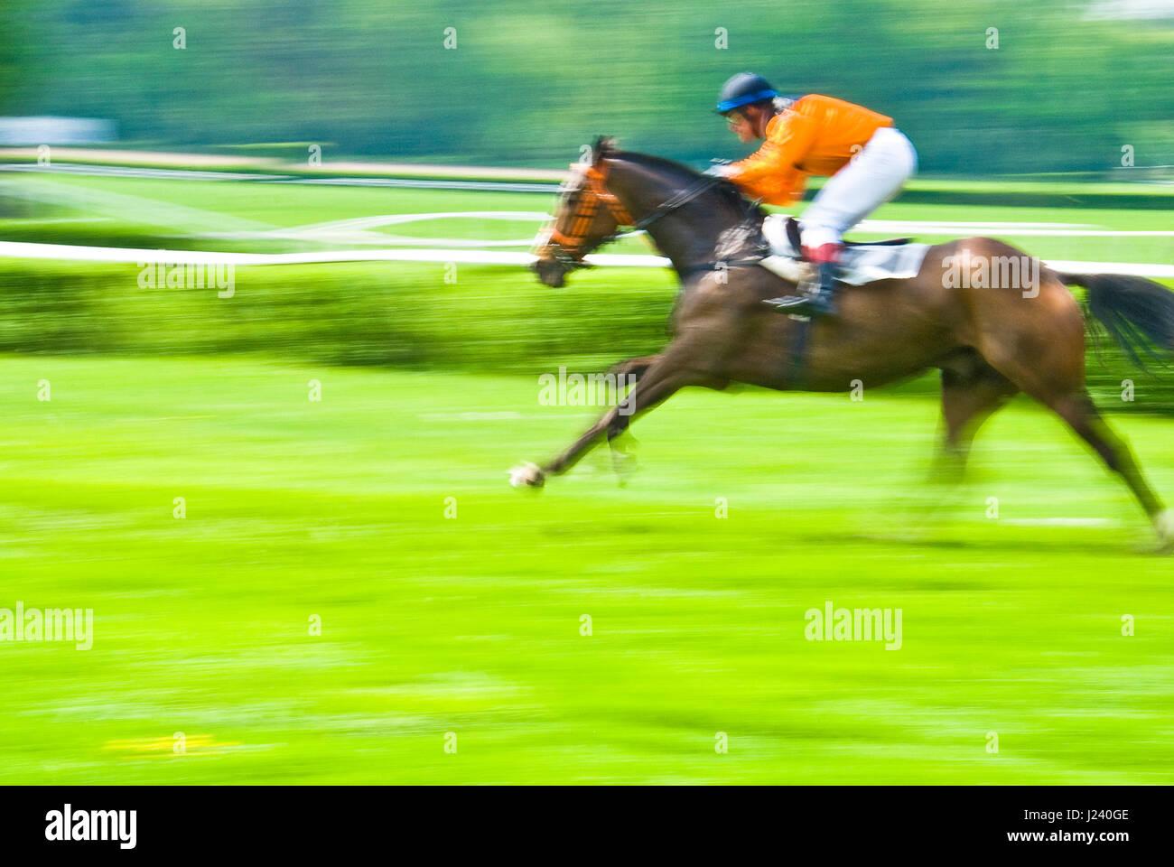 Course de chevaux terminer avec le cheval gagnant et jockey Photo Stock