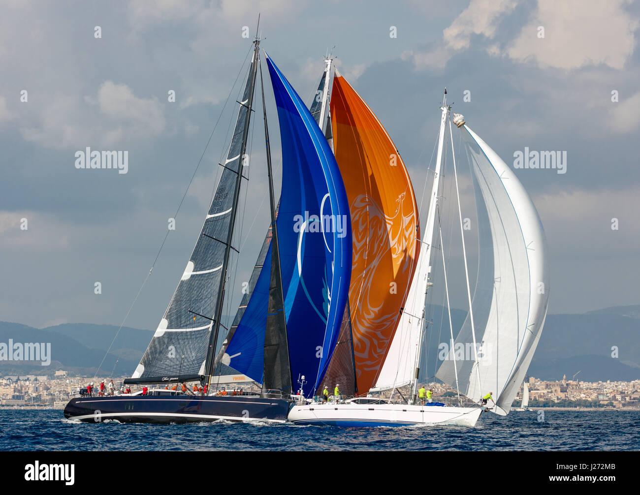 Yacht de course de voile Photo Stock