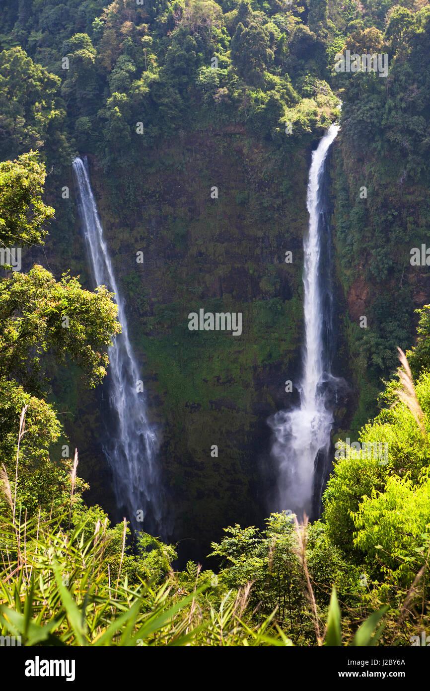 Cascade de Tad Fane, c'est la plus haute cascade du Laos. Plateau des bolavens, Laos. Banque D'Images