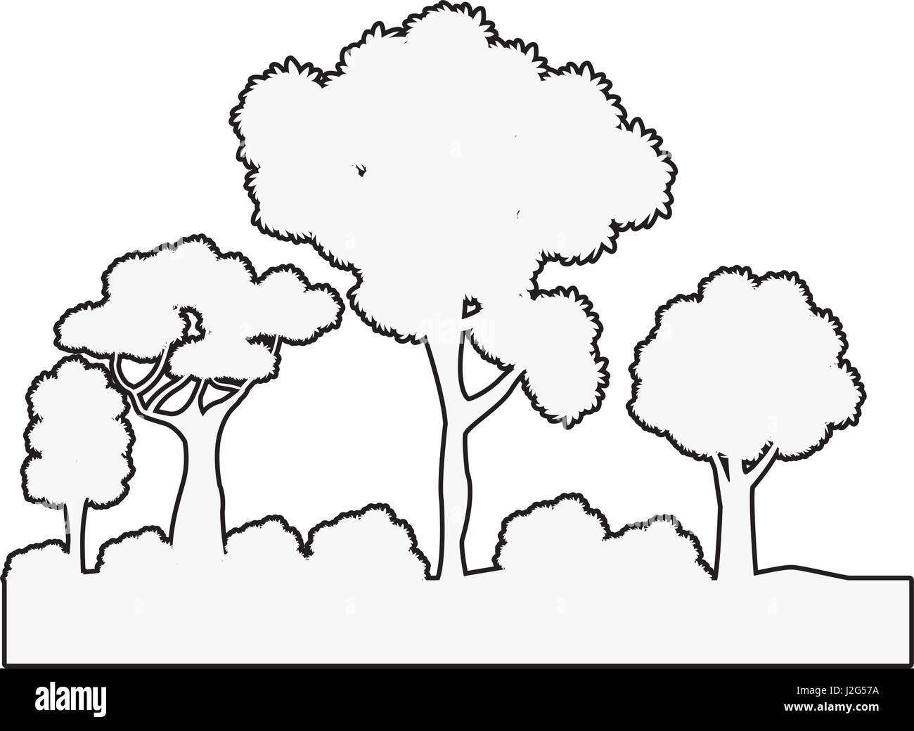 Bsuhes d'arbres les contours de l'écosystème naturel Photo Stock