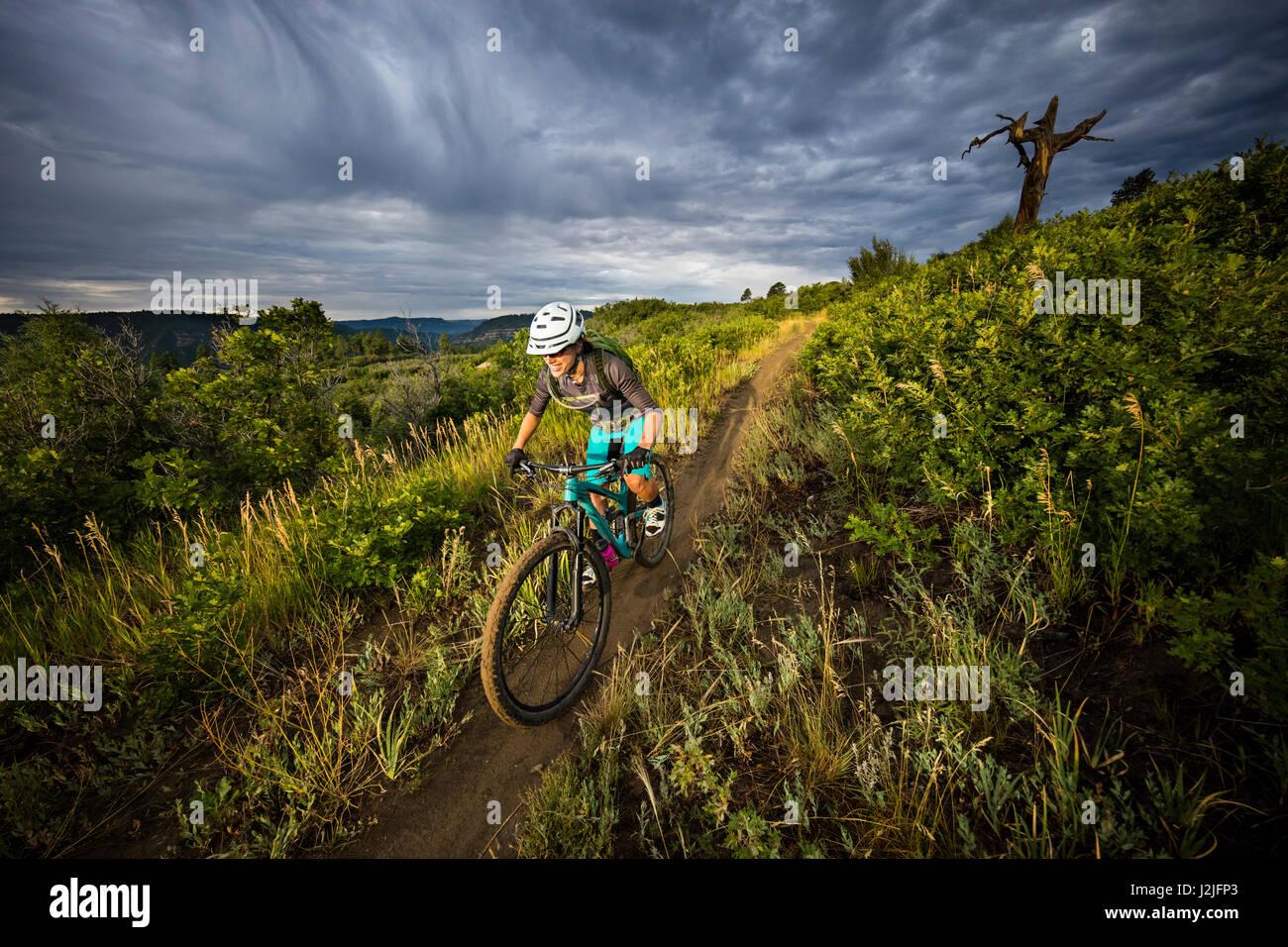 Nichole Baker vélo de montagne sur le Twin Buttes réseau de sentiers, Durango, CO. Photo Stock