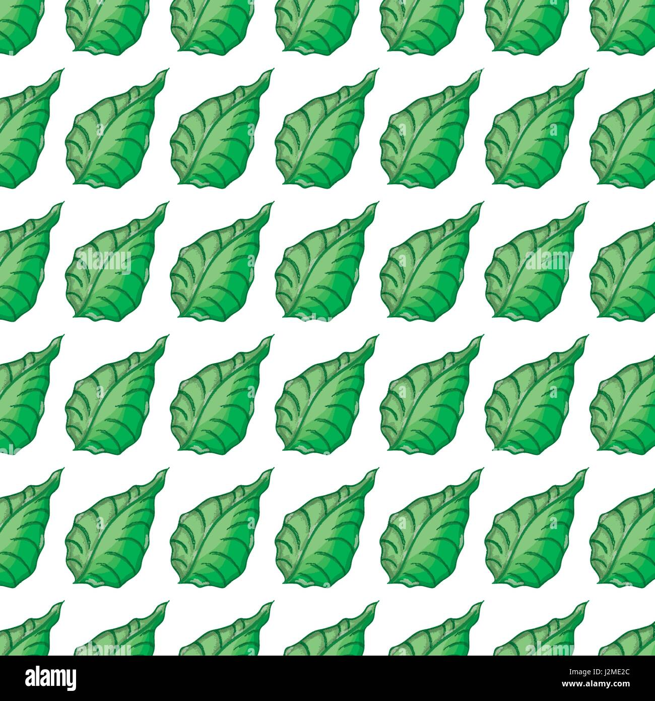 Arrière-plan de feuilles vert botanique mignon Illustration de Vecteur