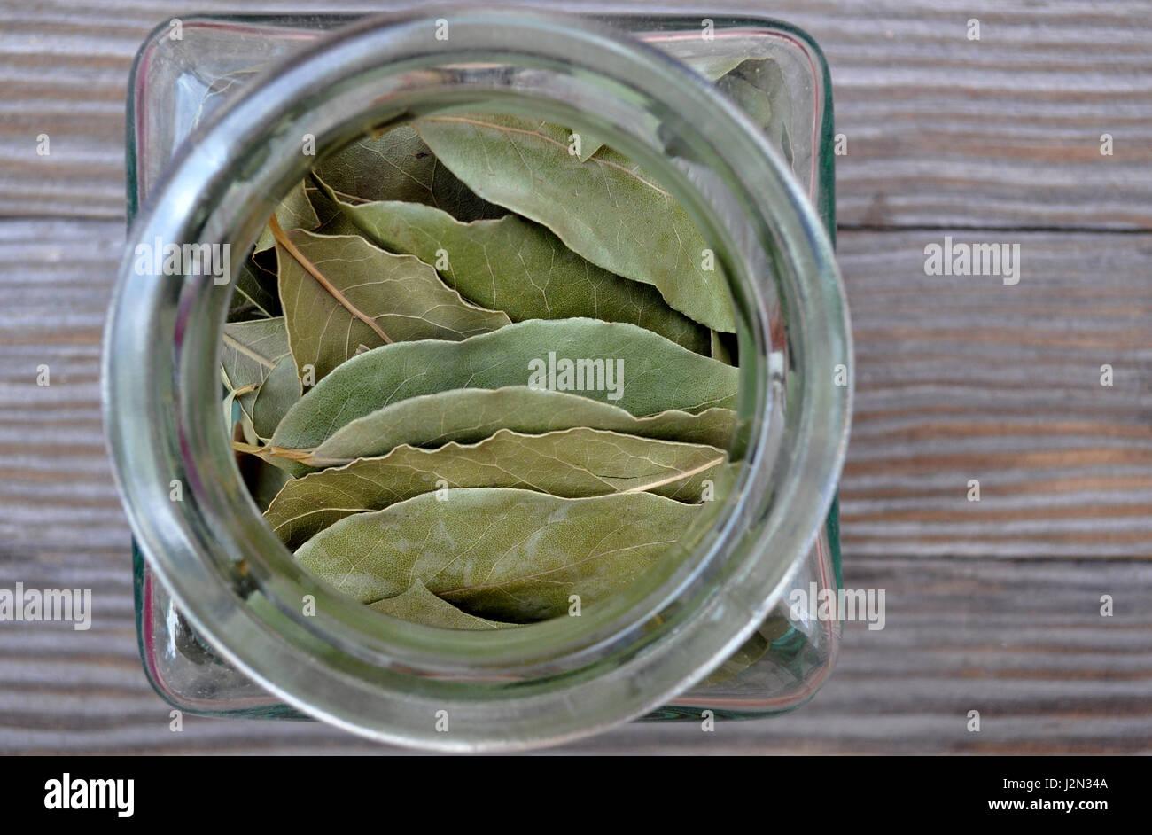 Pot en verre avec feuilles de laurier Photo Stock