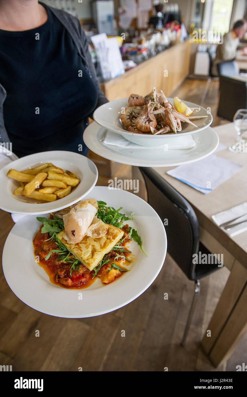 Waitress intérieur Restaurant transportant des plaques de service des aliments de l'industrie de service Photo Stock