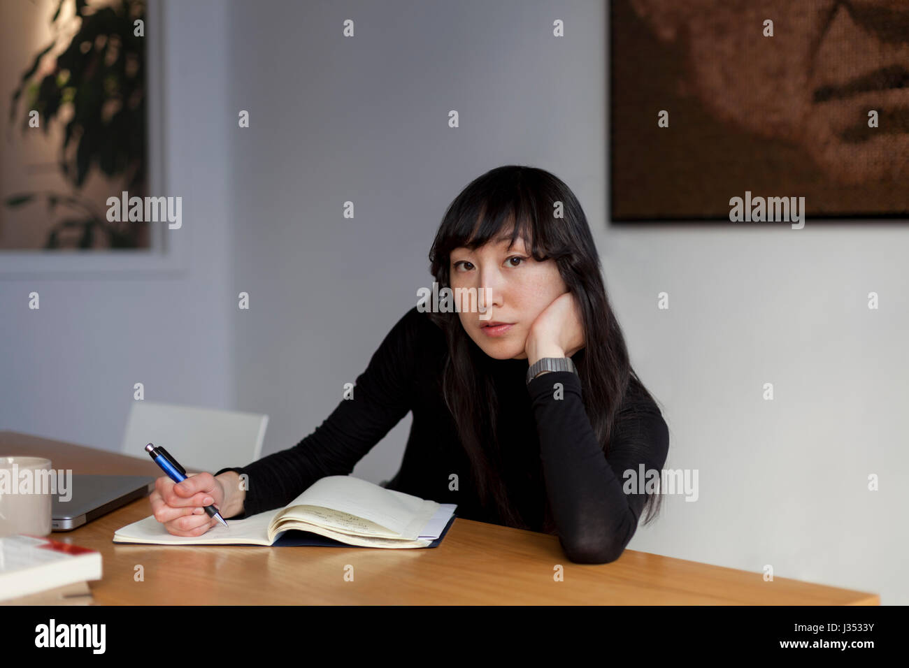 Portrait d'un professionnel young businesswoman Photo Stock