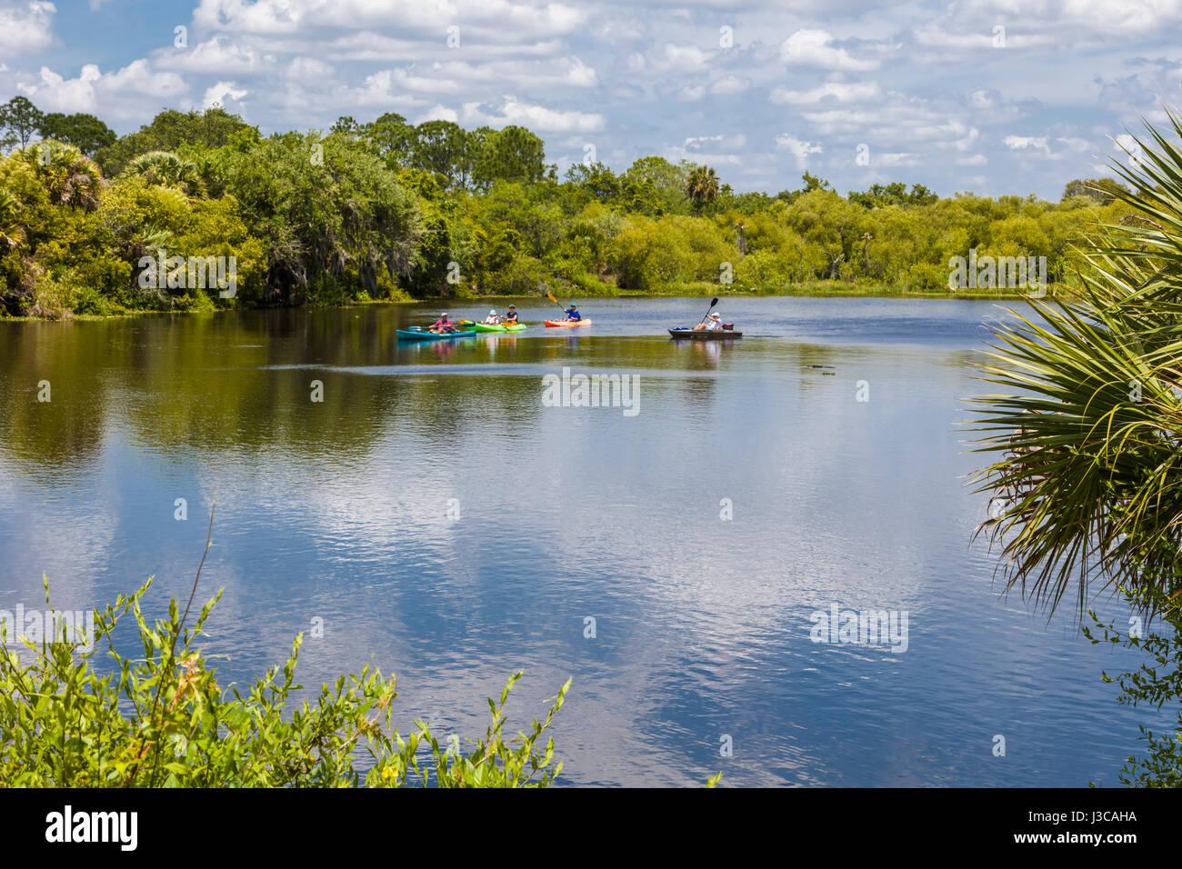 Deer Creek en Prairie Prairie Creek Cerf préserver Venise en Floride Banque D'Images