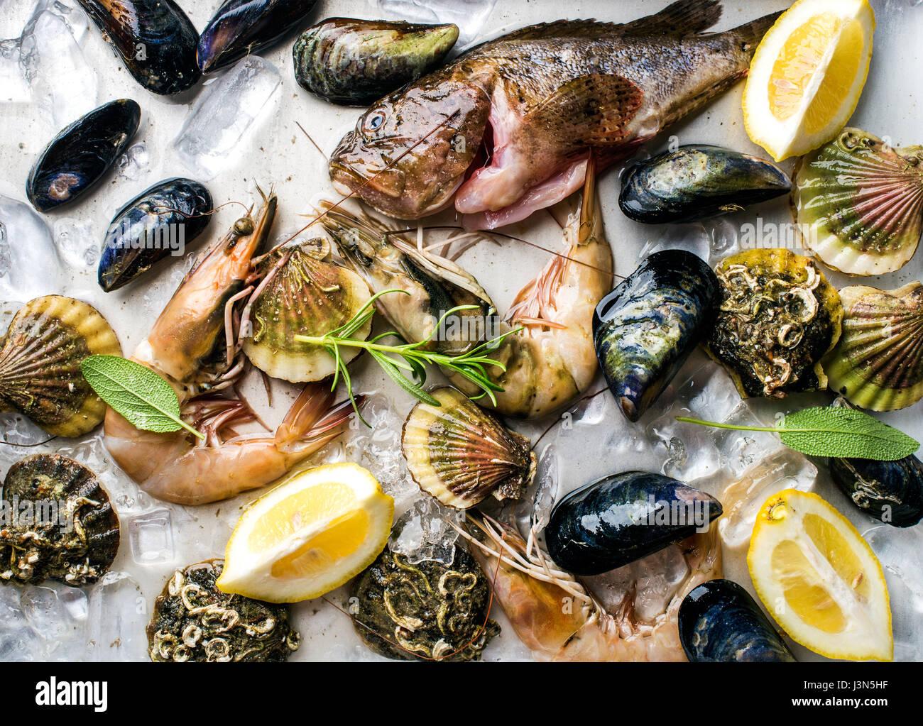 Des fruits de mer aux herbes et citron sur la glace. Crevettes, poissons, moules, pétoncles sur le plateau Photo Stock