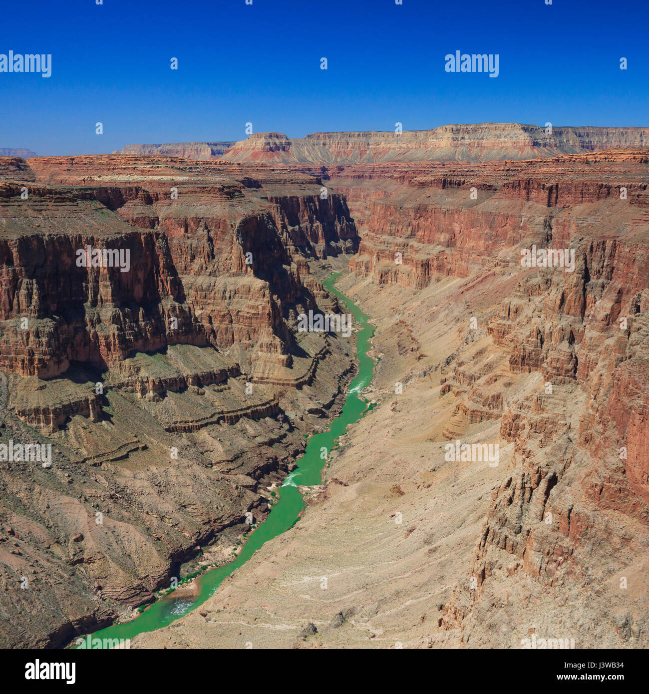 Dans le fleuve Colorado rapids en y domaine de grand canyon national park, arizona Photo Stock