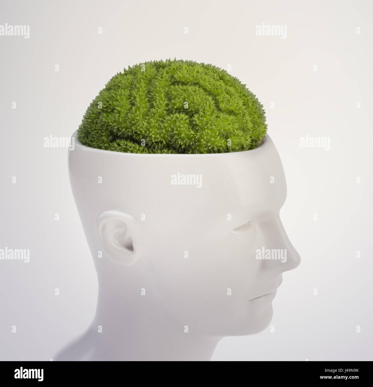 Plante en forme de cerveau humain - intelligence et mémoire concept 3D illustration Photo Stock