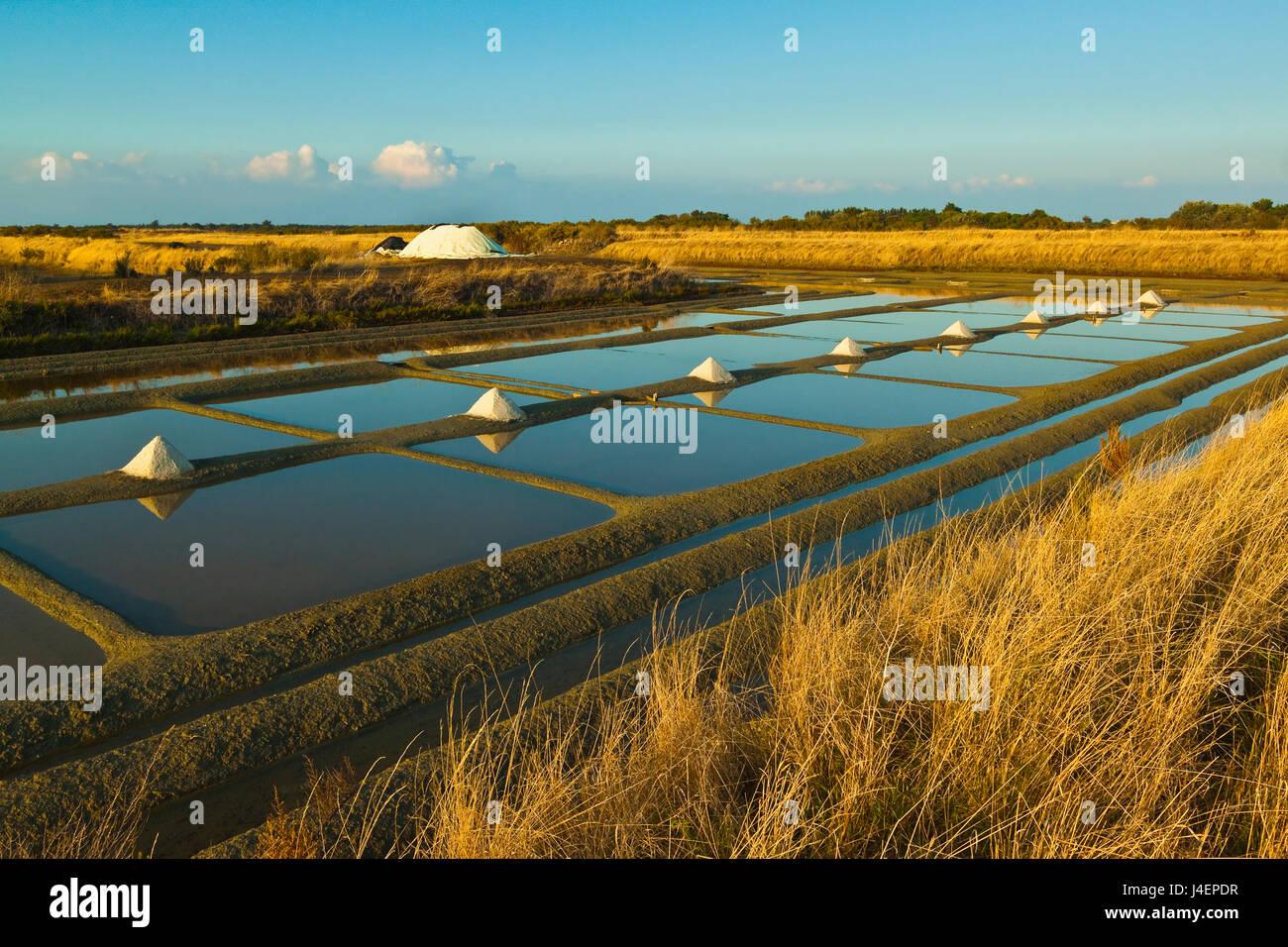 Les marais salants et les tas de Fleur de Sel autour du Fier d'Ars, marais de l'ouest, Ars en Ré, Ile Photo Stock