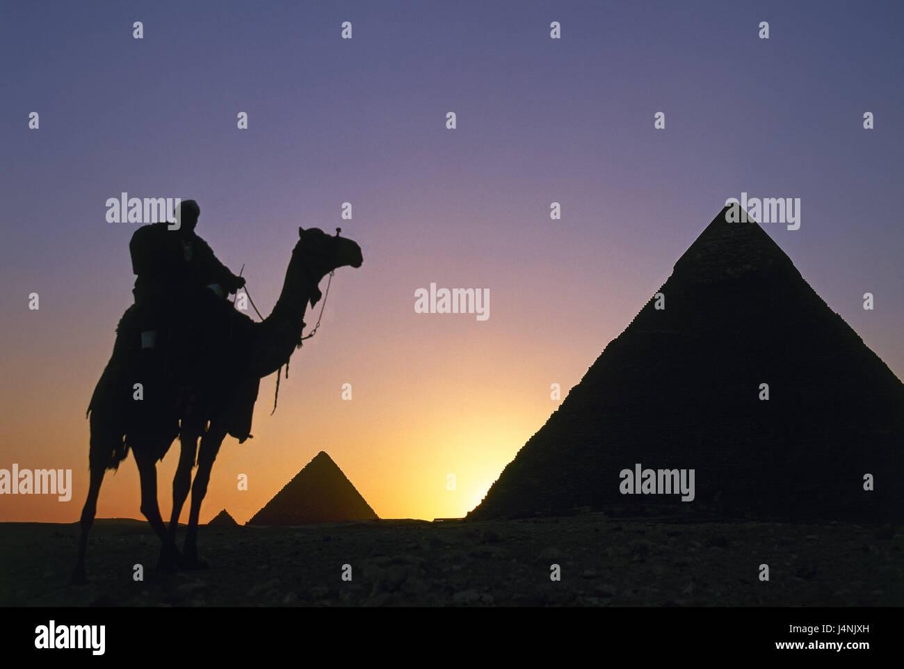 L'Égypte, Gizeh, pyramides, camel saigne, silhouette, coucher du soleil, l'Afrique, structures, historiquement, Photo Stock