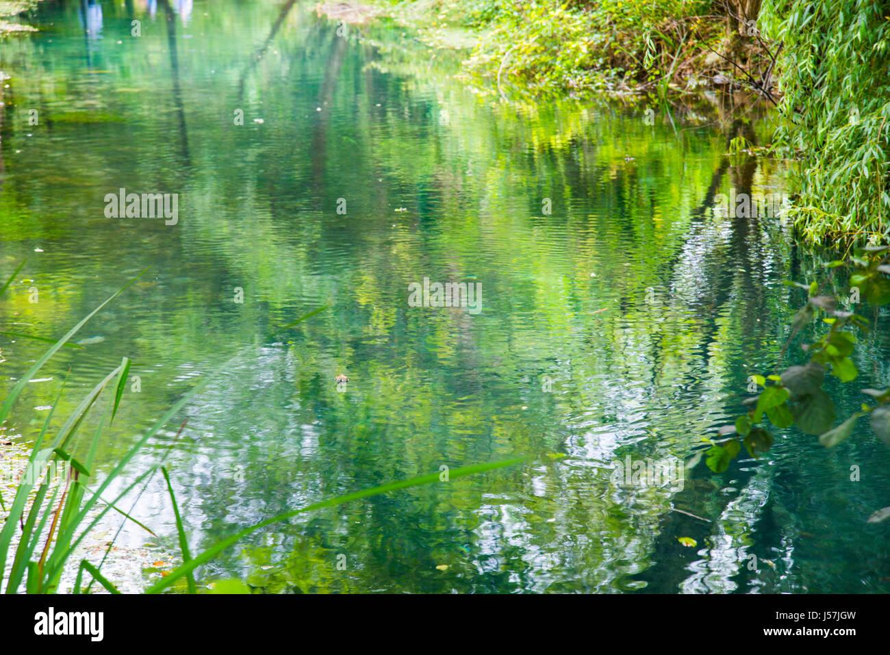 Réflexions sur l'eau. Photo Stock
