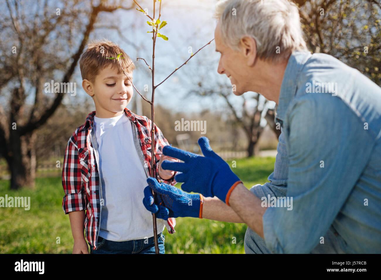 Close up of papi et réglage de grandkid fruit tree Photo Stock
