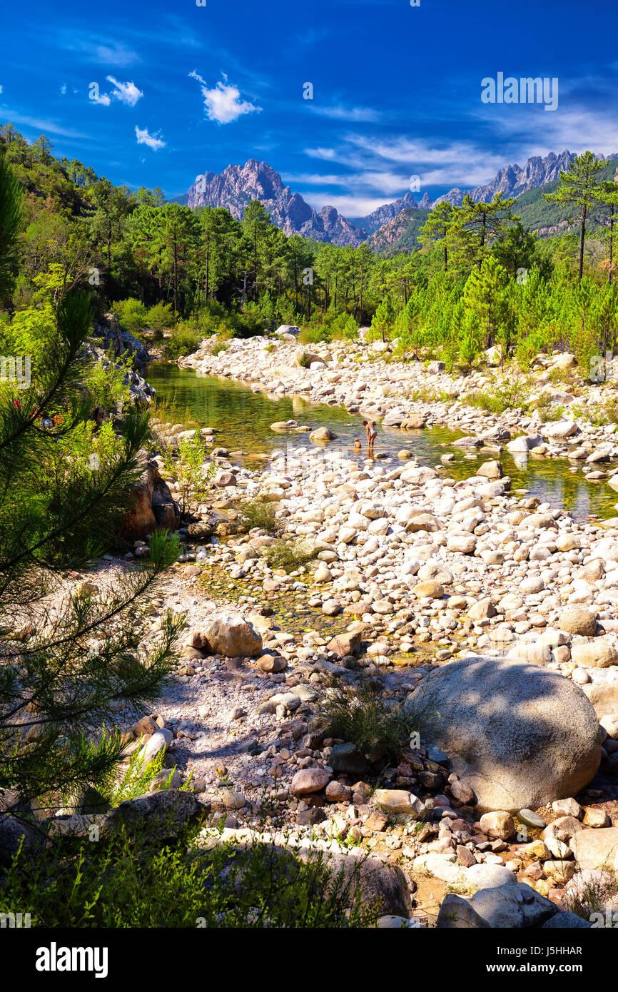 Pins dans les montagnes près de Col de Bavella Zonza ville, Corse, France, Europe. Photo Stock