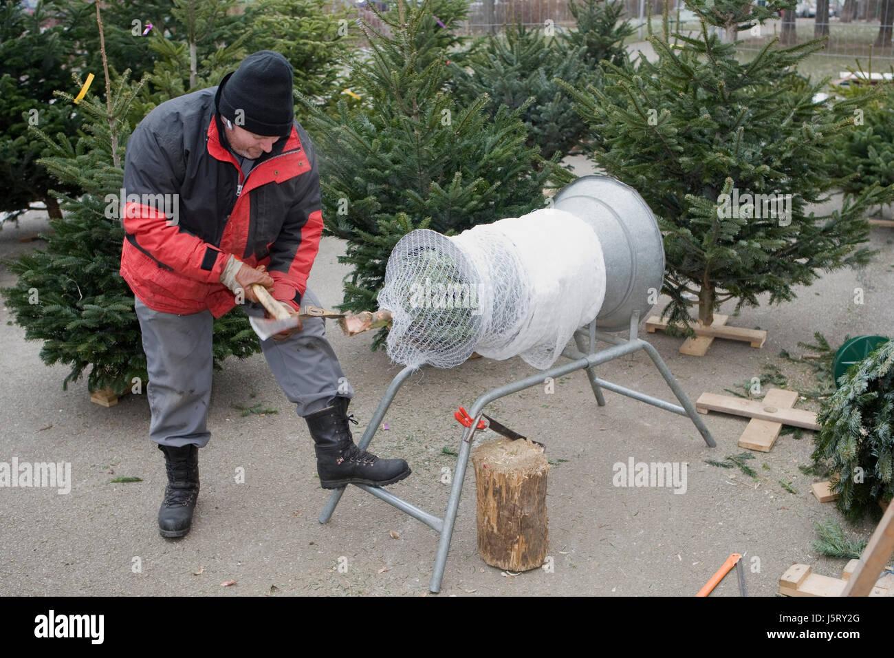 Partie célébration de Noël arbre de Noël vente conifères yule finement tissé kiosk Banque D'Images