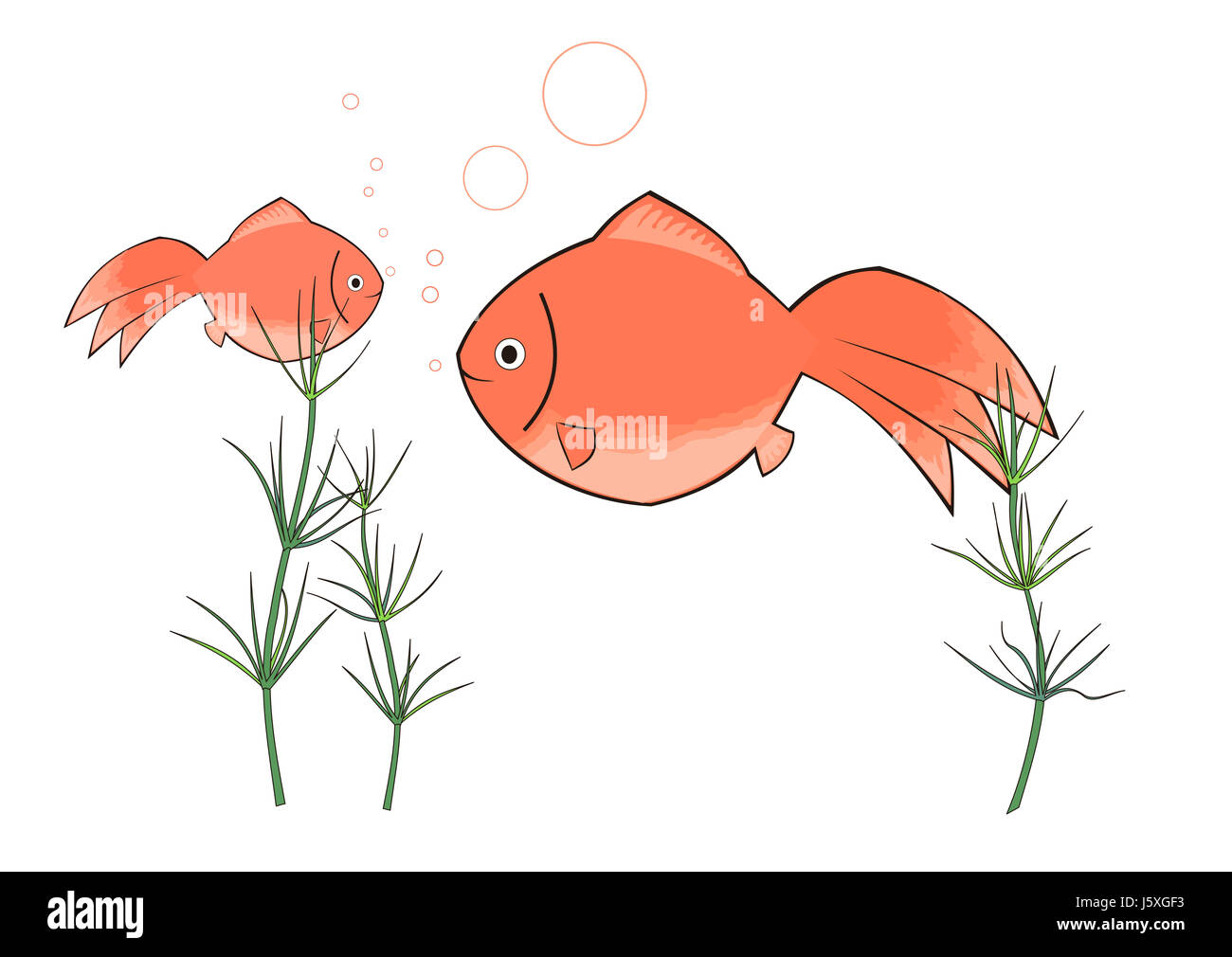 Dessin Poisson Photo Photo Copie De L Image Japonais Japon Rose
