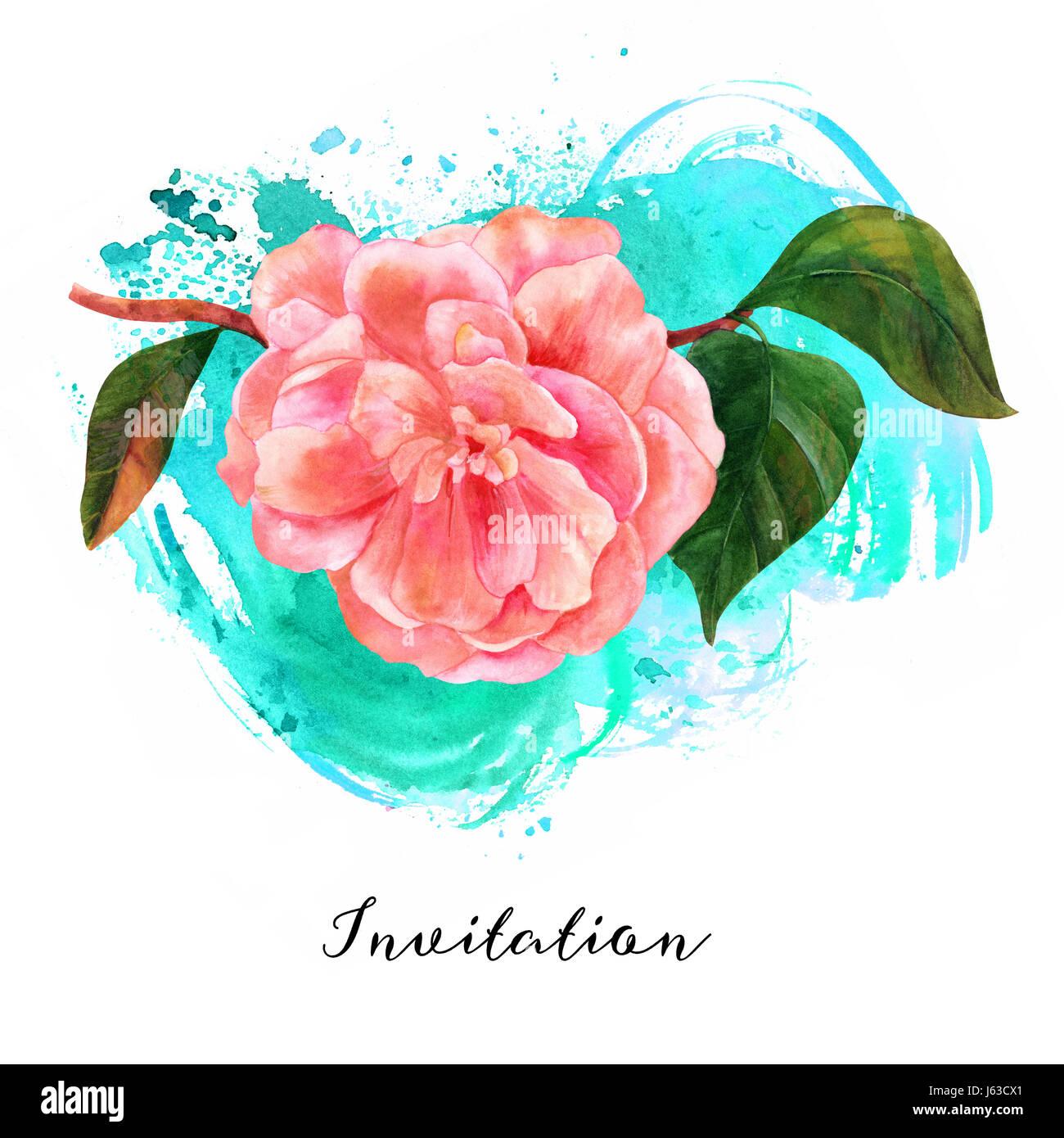Une Aquarelle Dessin D Une Fleur De Camelia Rose Tendre En Fleur