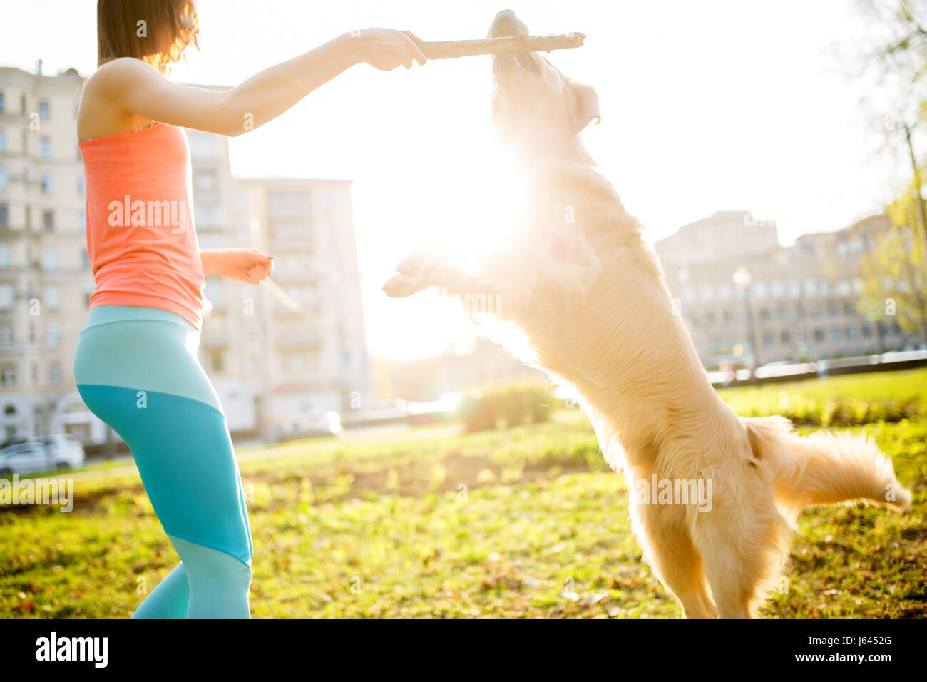 Femme avec chien et stick Photo Stock