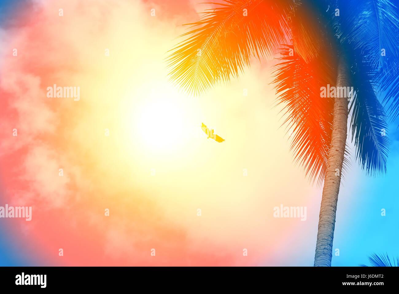 Arrire Plan Photo Rtro Avec Palmiers Et Sunshine Paradise Island Modle De Conception Poster Carte Visite
