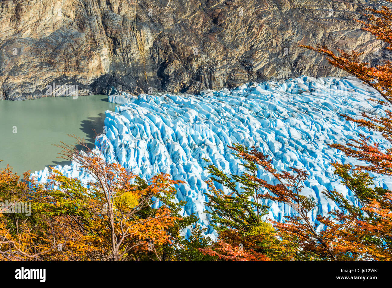 Glacier Grey,Patagonie, Chili - un glacier dans le sud du champ de glace Patagonique, Cordillera del Paine Photo Stock