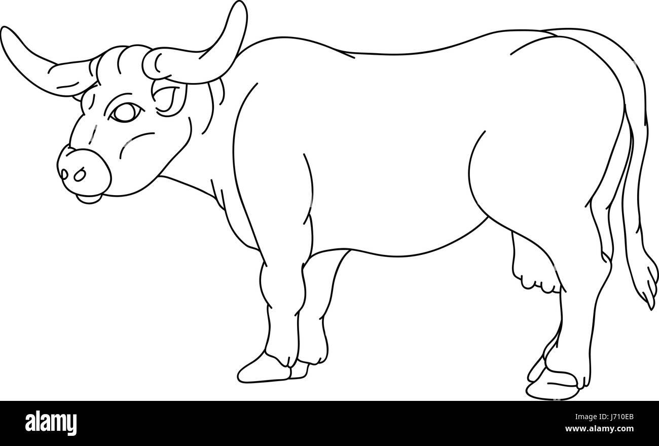 Illustration Couleur Isole Peinture Vache Dessiner Cartoon Art
