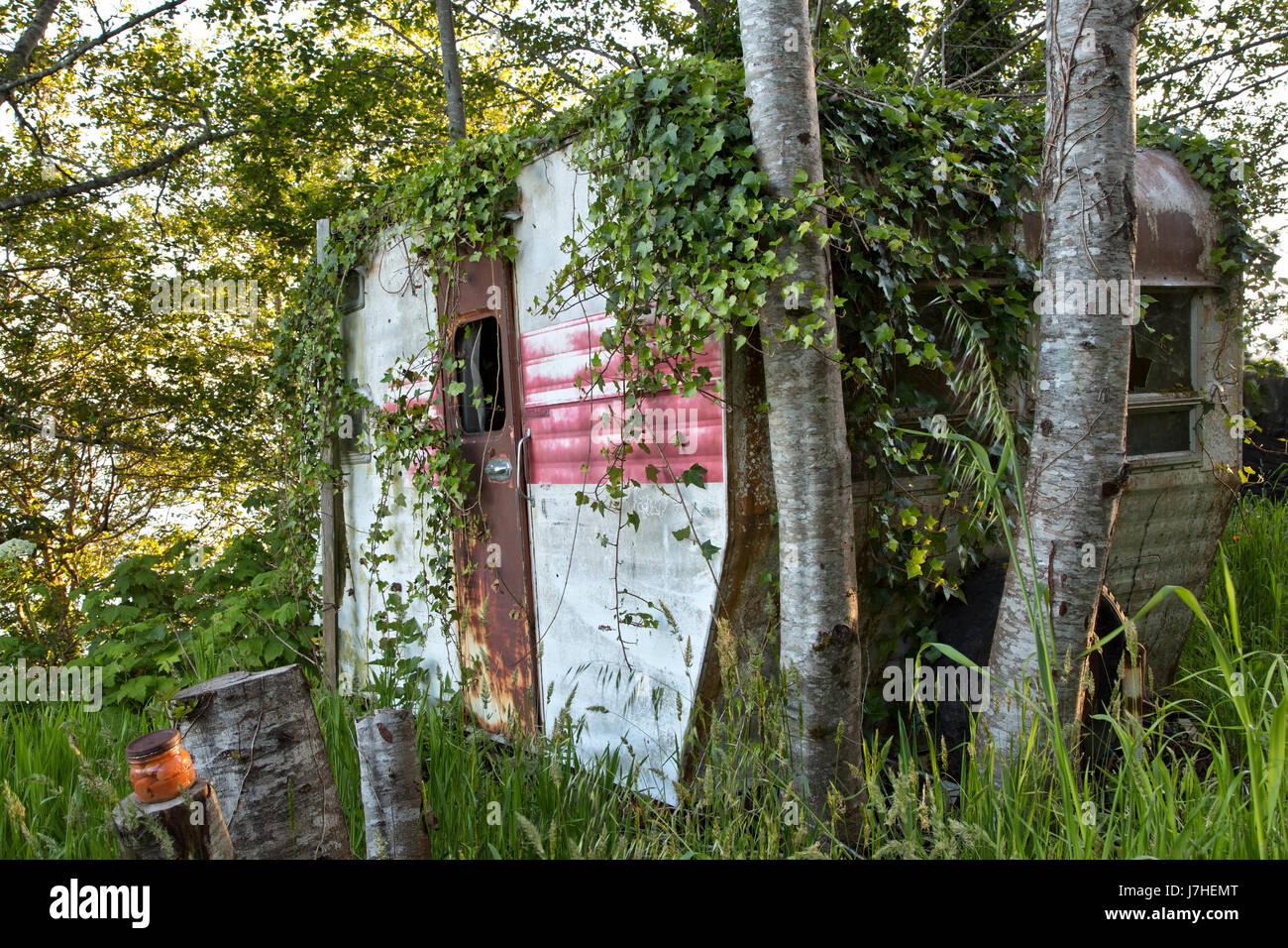 Vintage Travel Trailer Tour-une-maison, avec l'espagnol qui empiètent le lierre, se reposant sous un bosquet Photo Stock