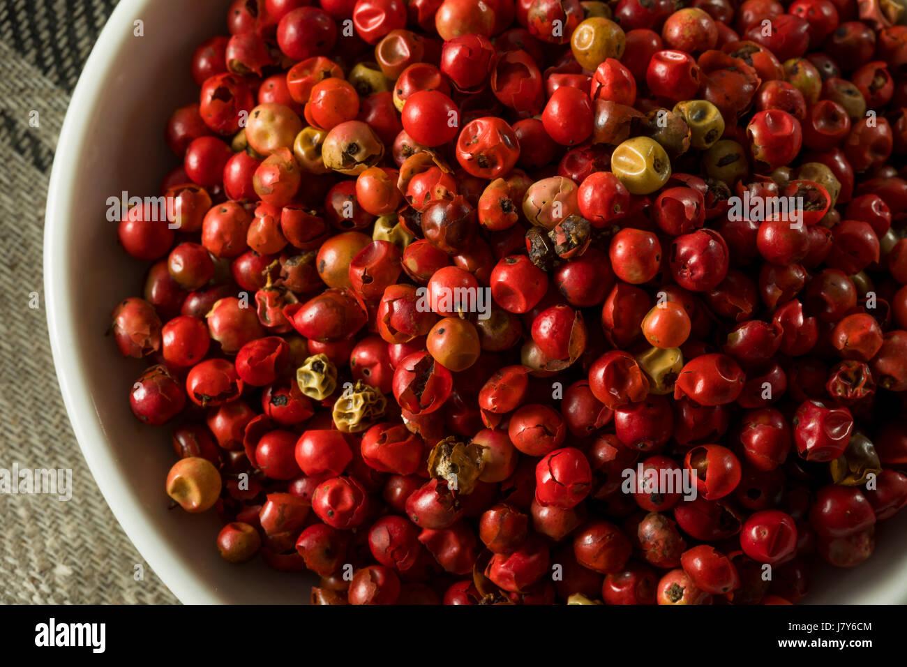 Poivre rouge organique sèche prête à broyer Photo Stock