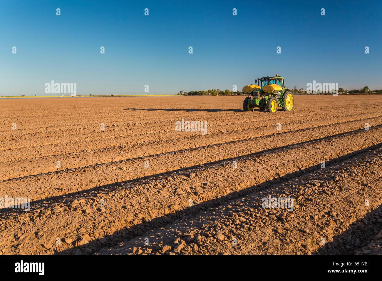 Un tracteur sur un terrain préparé pour l'irrigation dans l'Imperial Valley, California, USA. Photo Stock