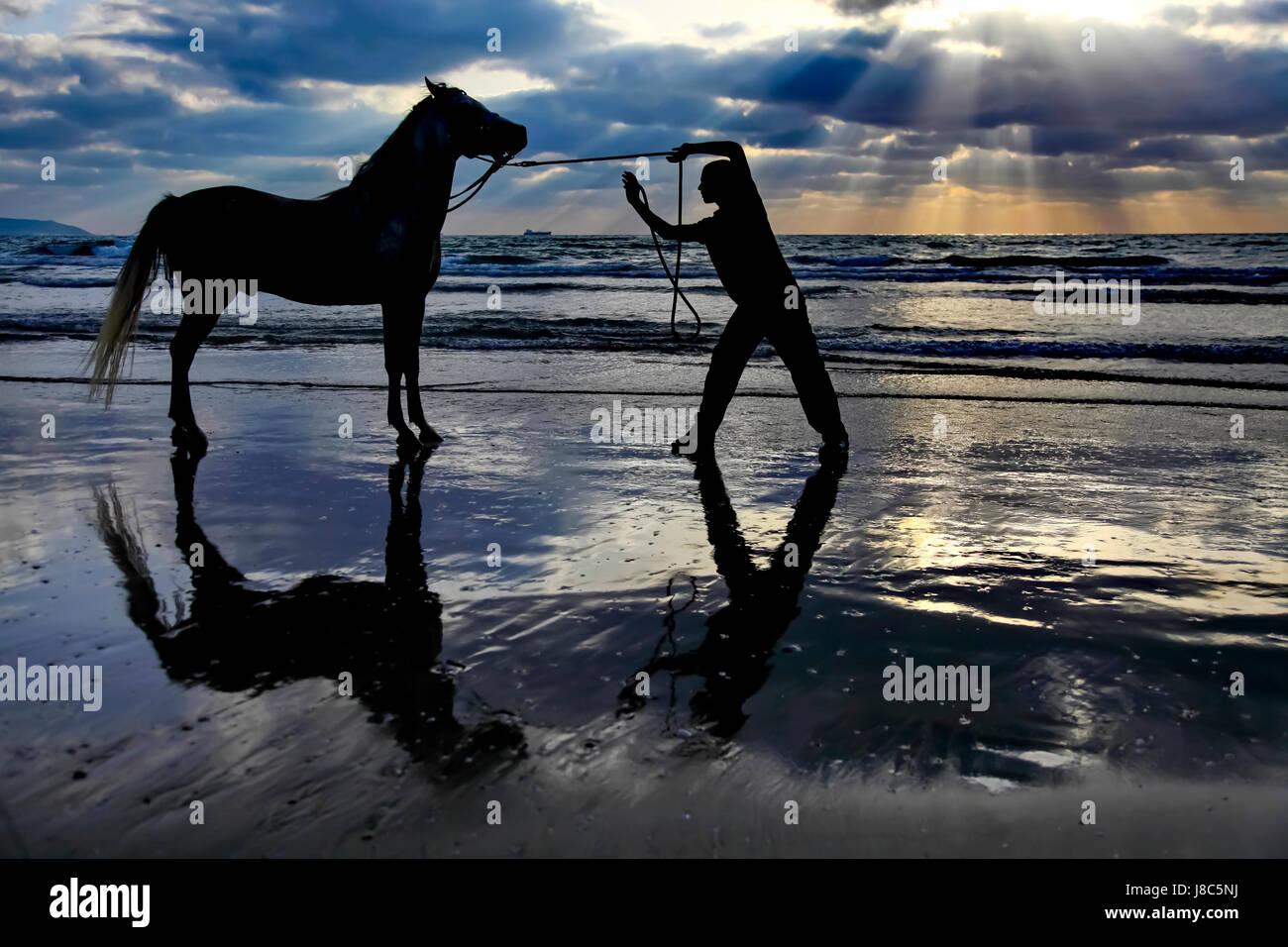 Silhouette d'un homme et de son cheval sur la plage au coucher du soleil méditerranéen. Photographiée Photo Stock