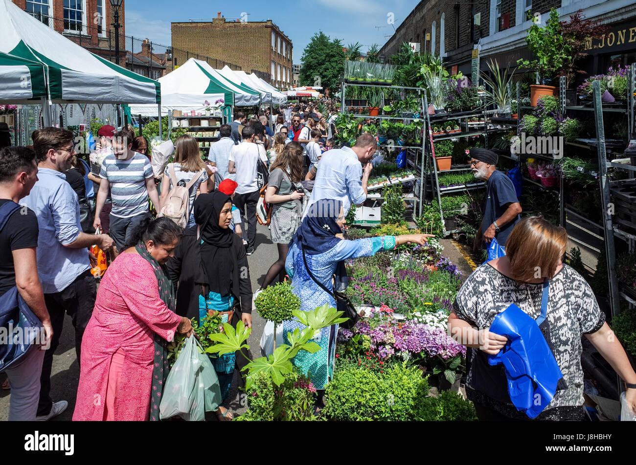 London's popular Columbia Road Flower Market dans l'Est de Londres sur un dimanche matin ensoleillé Photo Stock