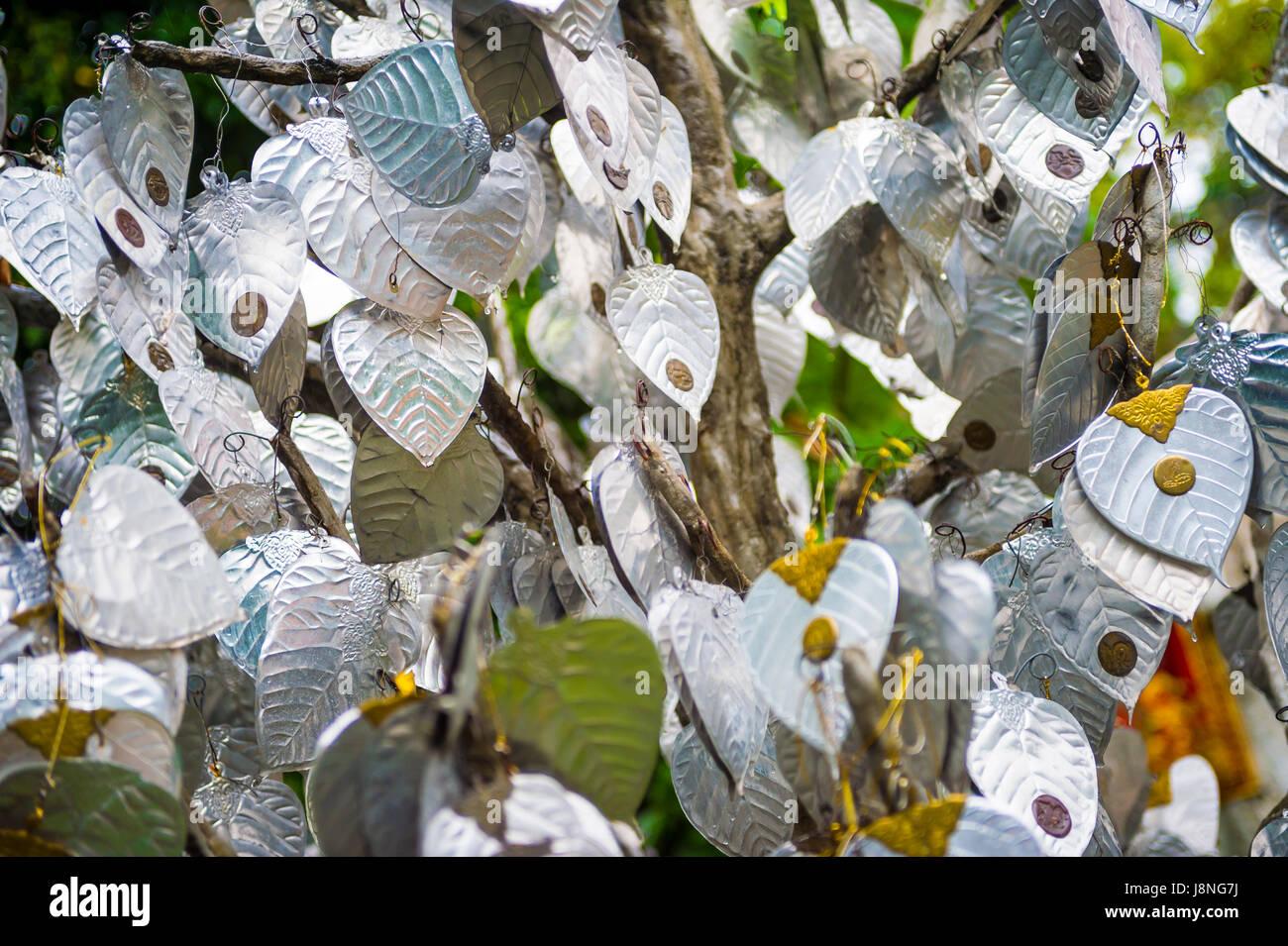 Feuilles de bodhi d'argent suspendue à un arbre sacré qui souhaitent dans un temple bouddhiste à Bangkok, Thaïlande Banque D'Images