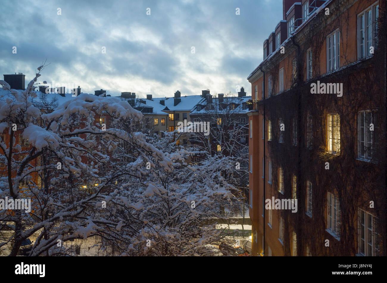 Maisons et arbre couvert de neige en hiver Banque D'Images