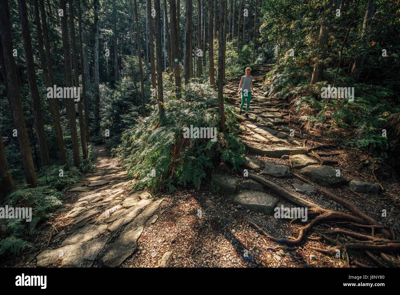 Balades en forêt randonneur Banque D'Images