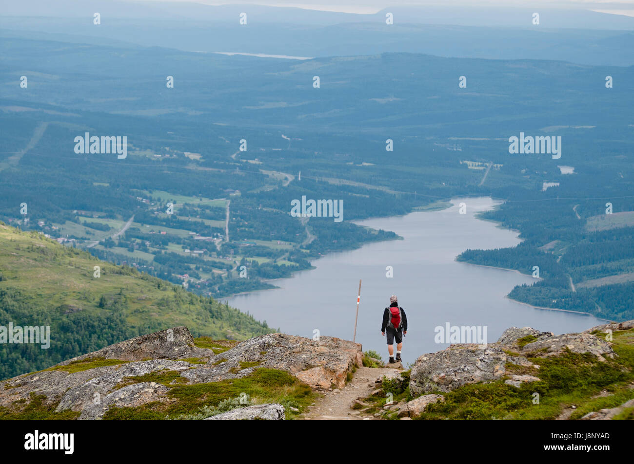 Man looking at landscape Banque D'Images