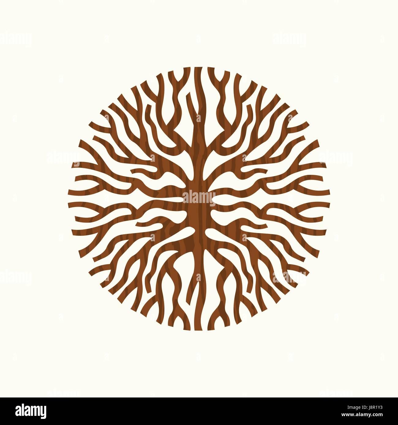 Rsum Forme Du Cercle Des Racines Des Arbres Ou Branches