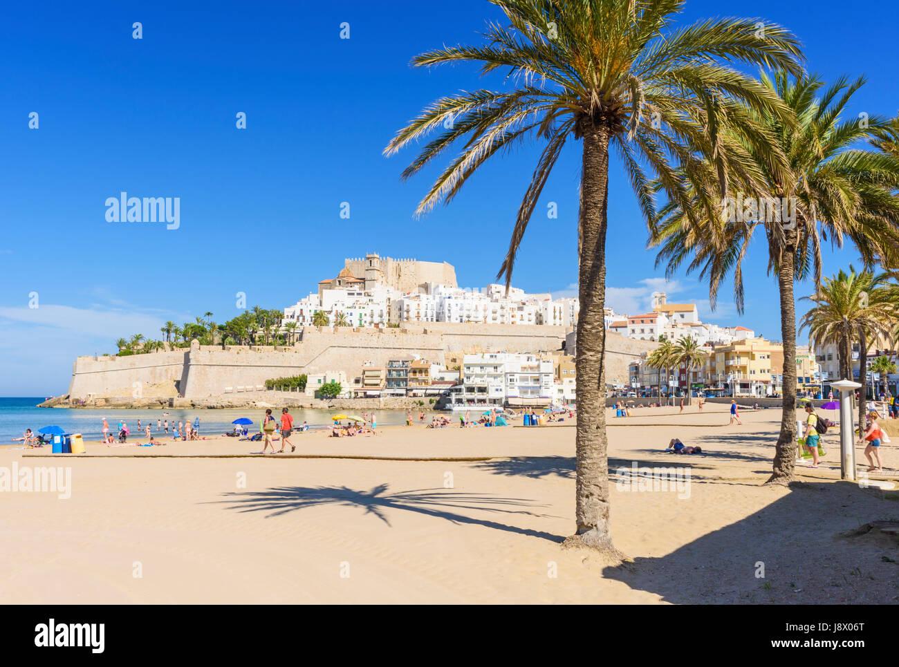 Palmiers le long de la plage avec le Château de Papa Luna et de la vieille ville sur le promontoire rocheux Photo Stock