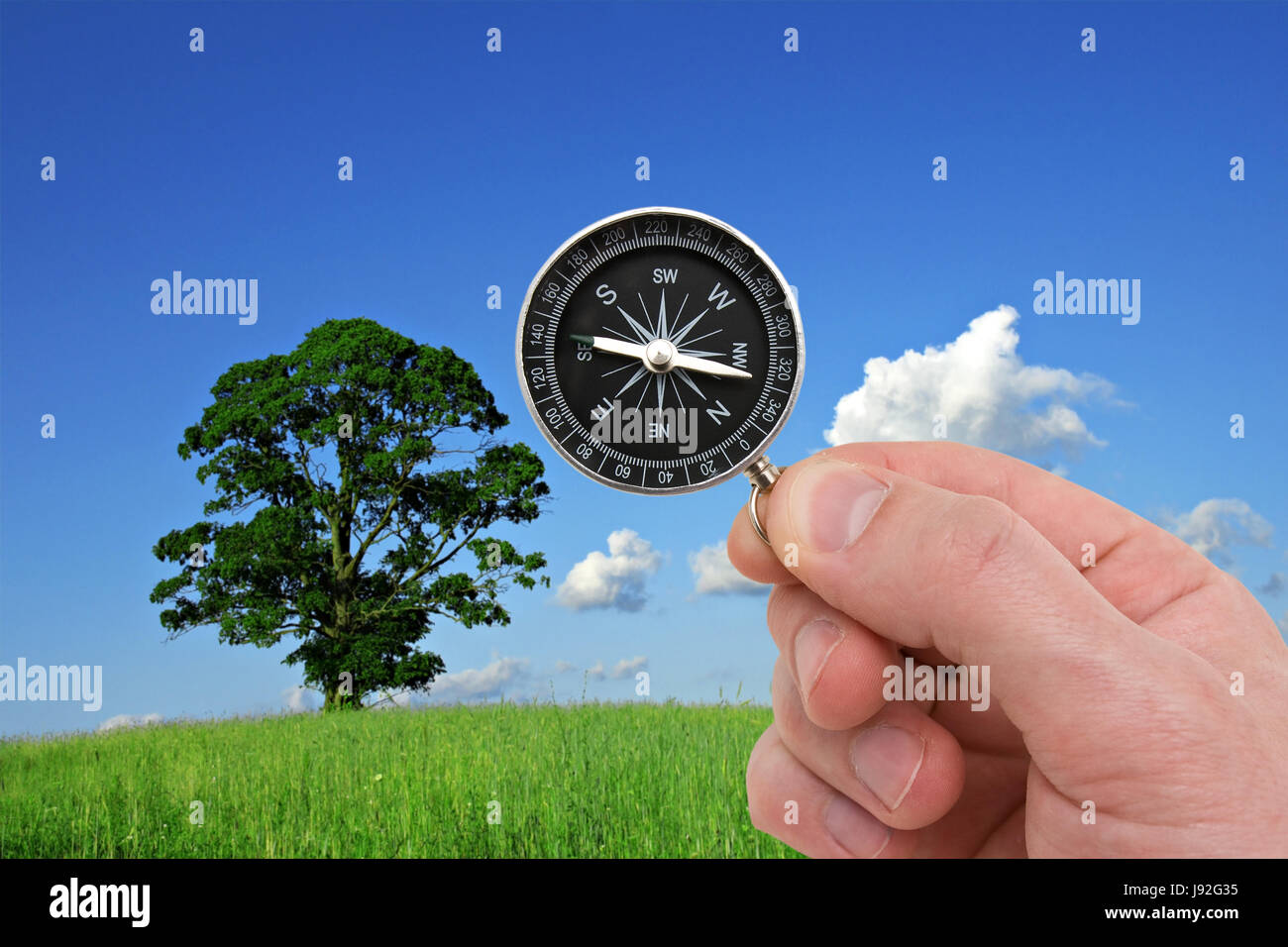 Voyage, aventure, orientation, cartographie, paysan, rural, nature, boussole, Photo Stock