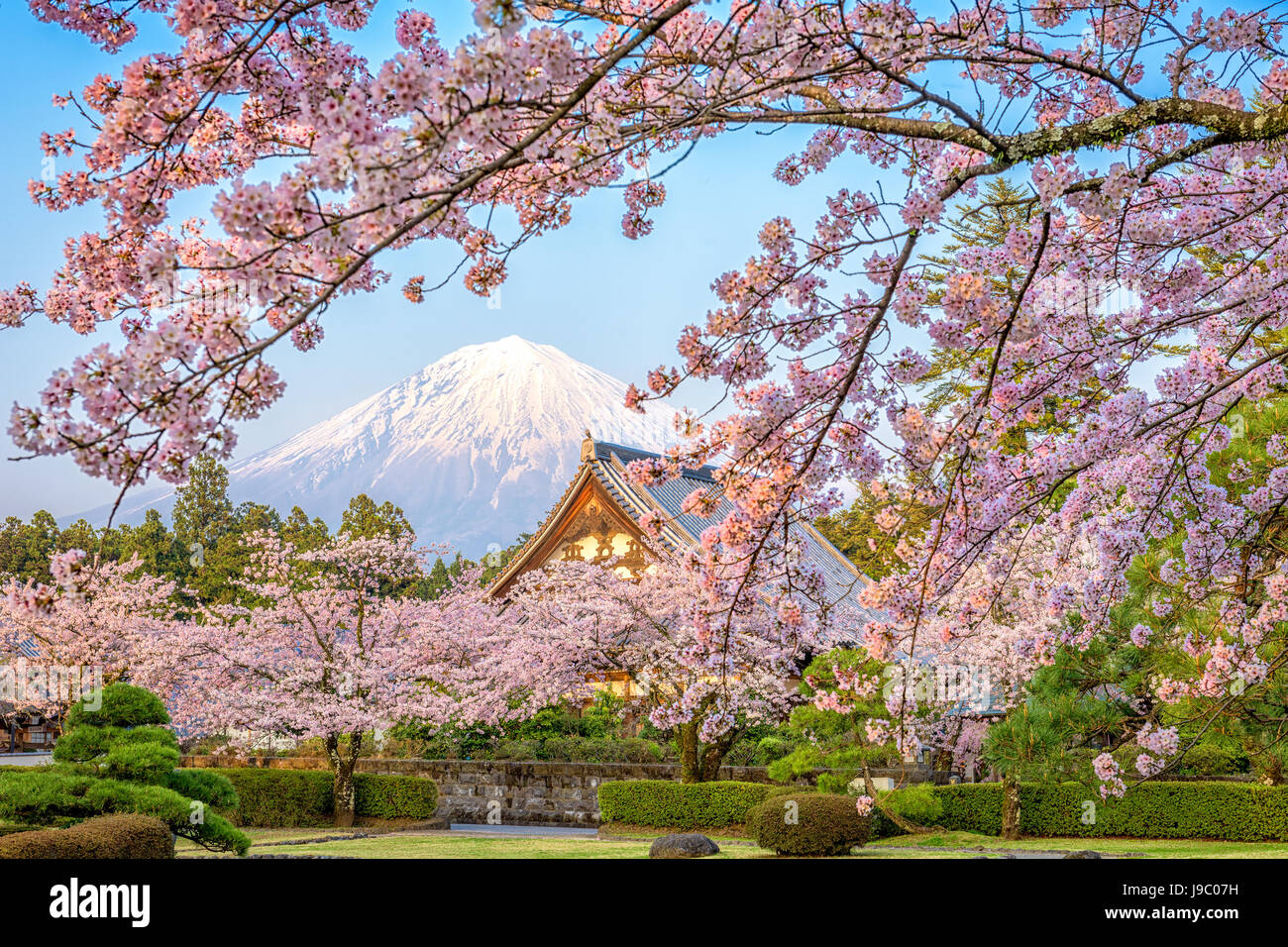 Shizuoka, Japon avec Mt. Fuji au printemps. Photo Stock