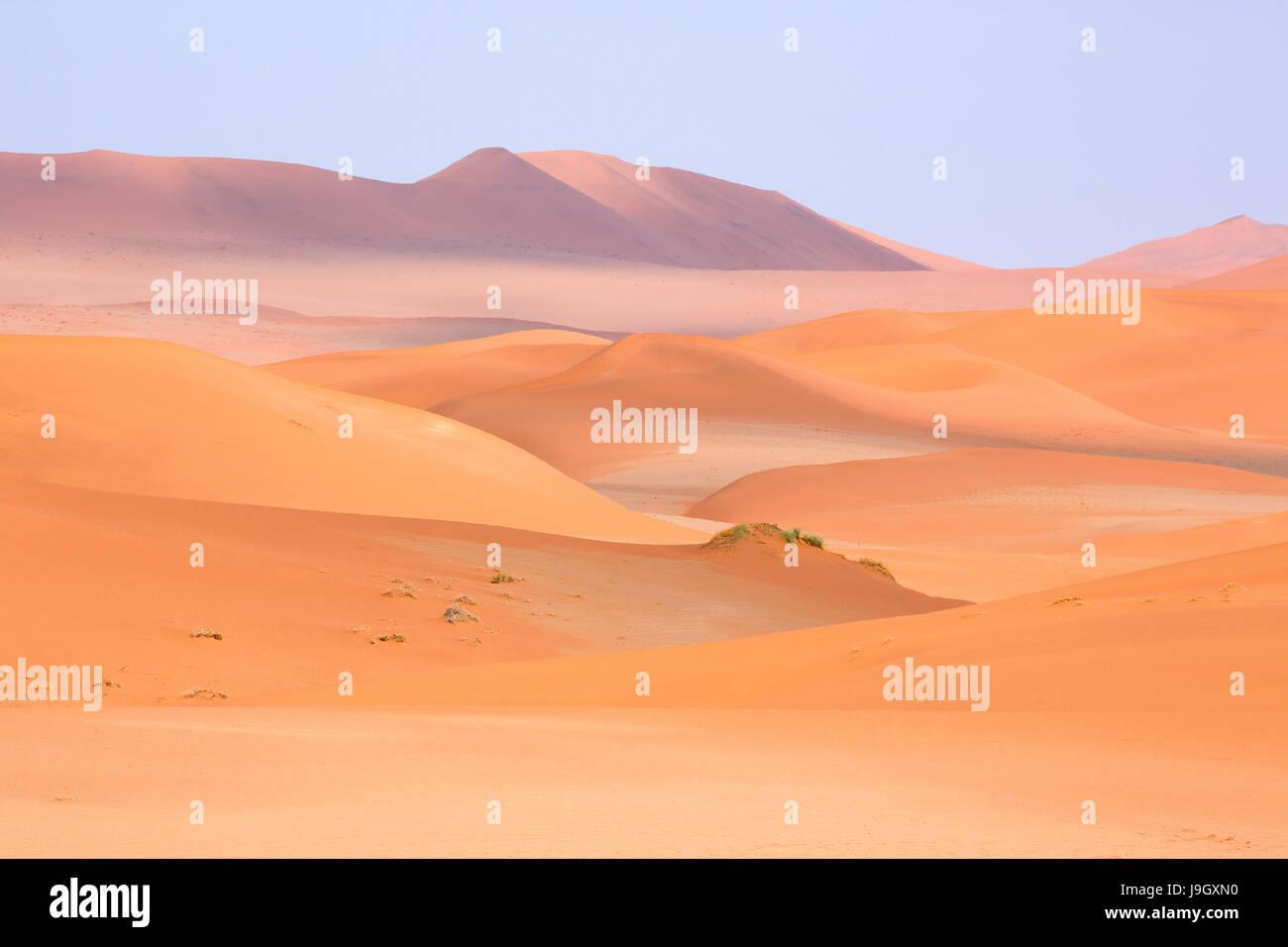 Le désert du Namib en Namibie, Afrique Banque D'Images
