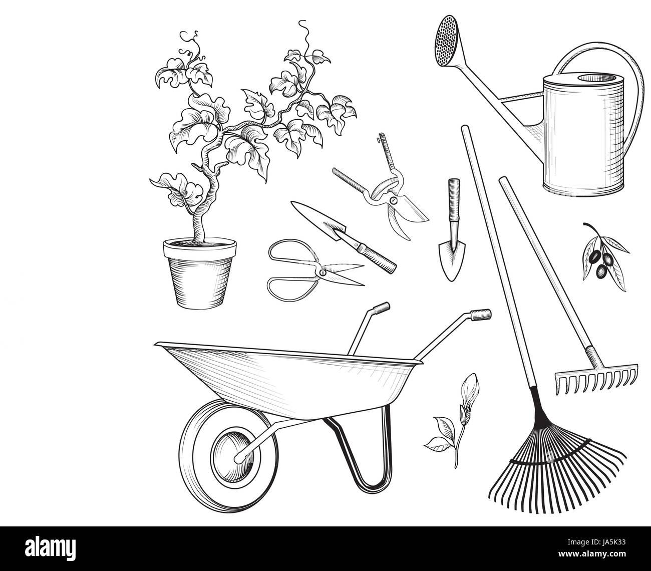 Ensemble de jardin Outils de jardinage, plantes. arrosoir, brouette, pelle, râteau, bêche, panier signes Photo Stock