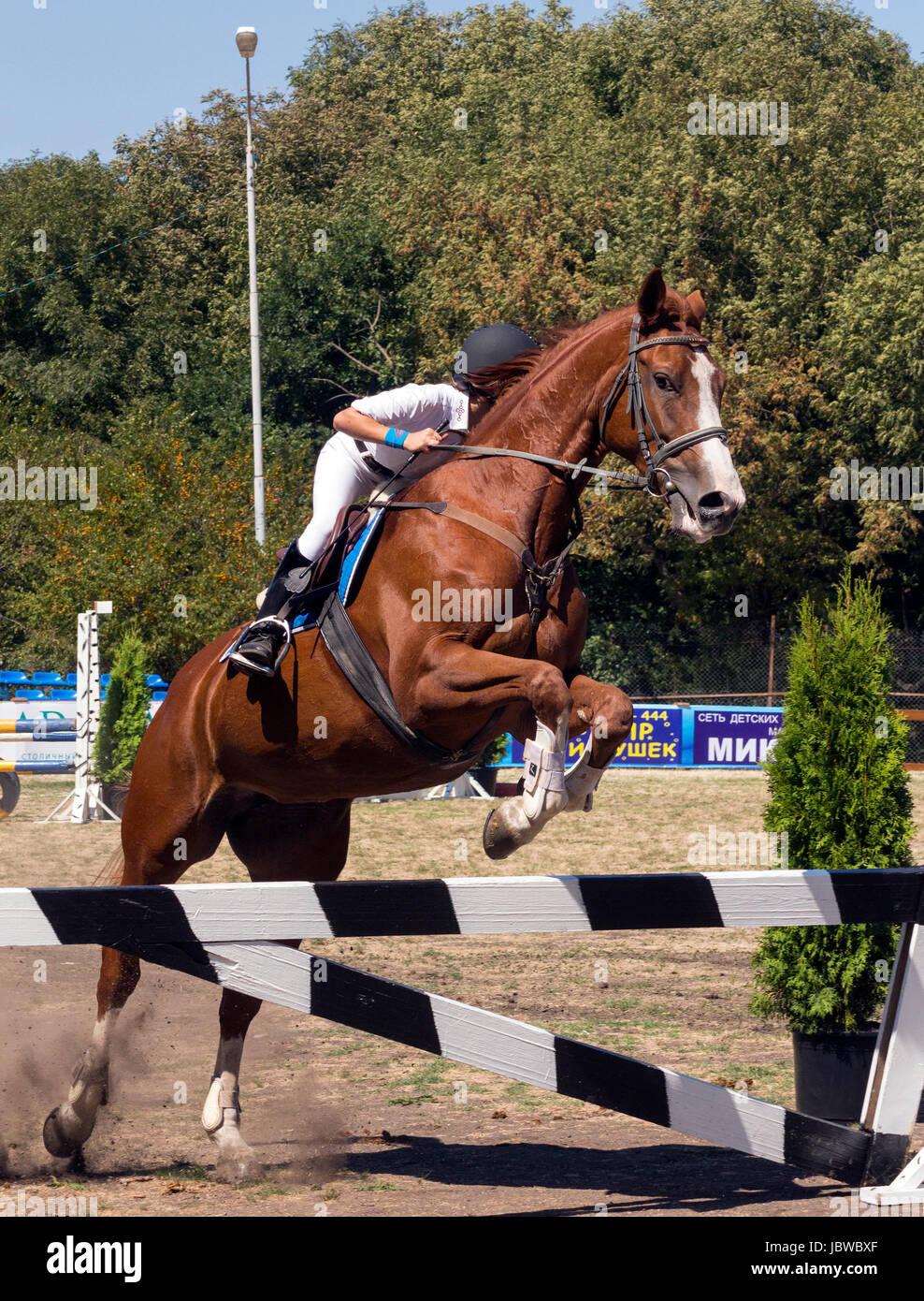 PYATIGORSK- 5 septembre:Equestrian show jumping en pied de la montagne Mashuk,sur sept 5,2015 à Piatigorsk, Photo Stock