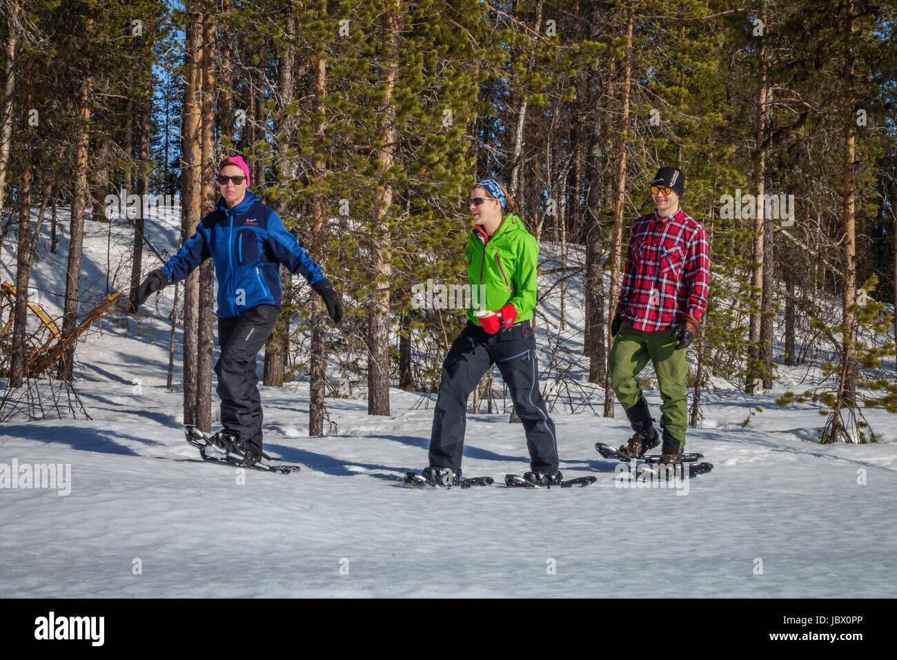 La raquette, for Kangos, Laponie, Suède Photo Stock