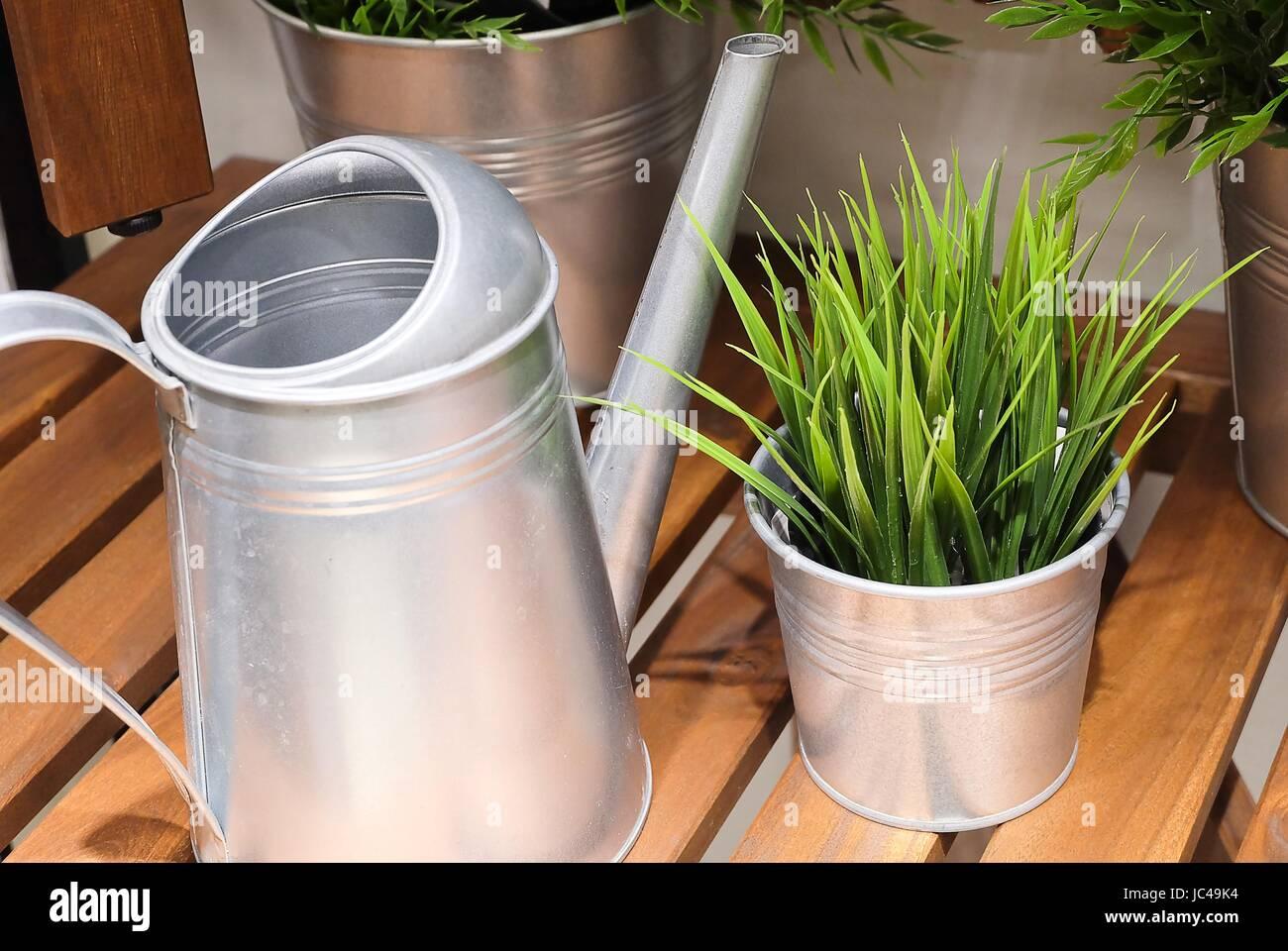 Arrosage Pour Plantes En Pot arrosoir ou d'arrosage des plantes vertes en pot, l'arrosage